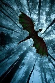 Overhead Dragons In 2019 Drake Tetování Draka Kresby