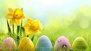 Holiday Easter Egg 4k eggs wallpapers ...