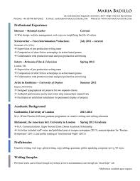Cv American Style Gallery Of Sample Cv Usa Free Resume Templates