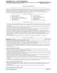 Business Consultant Resume Objective Samples Free International