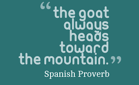 Goat Quotes Inspiration Goat Quotes Funny Archives Mr Quotes