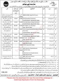 danish school hasilpur jobs 2015 application form danish school hasilpur jobs 2015 application form teaching faculty admin staff