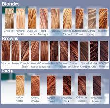Cinnamon Hair Color Chart Goods Redken Hair Color Chart Crazy Colour Hair Colour Chart