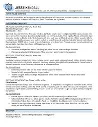 Resume Law Enforcement Resume Examples