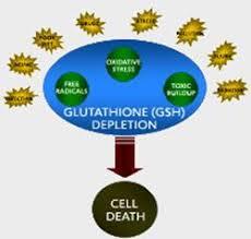 Foto Glutathionmangel