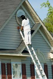 I Exterior Painting In Land O Lakes FL