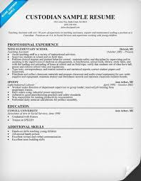 Janitor Sample Resume Summary Examples For Resume Substitute Resume Janitor  Skills
