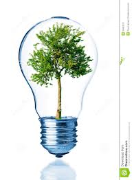 Light Bulb With Tree Inside Tree Inside Of The Light Bulb Stock Image Image Of Nature