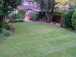a very common theme in landscaping projects is the need to tackle all your gardens issues at once instead of in stages it is tempting to do things in small