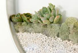 baffling design wall planters ideas with modern s m l f source