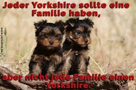 Yorkshire Zitate Und Sprüche