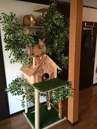 outdoor cat tree house plans lovely lovely cat house design diy