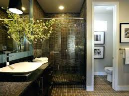 bathrooms with showers only master bathroom showers great master bathroom ideas shower only in excellent furniture