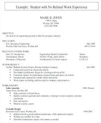 Excellent Ideas Entry Level It Resume With No Experience Entry Level
