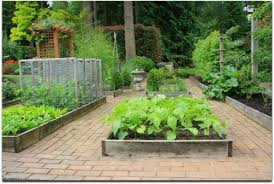 Small Picture Best Raised Garden Bed Planting Ideas 17 Best Ideas About Raised