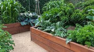 garden patches denver co garden patch