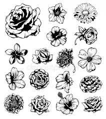 Tetování Květiny Stock Vektory Royalty Free Tetování Květiny