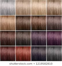 Hair Dye Colors Chart Hair Color Chart Images Stock Photos Vectors Shutterstock