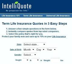 Instant Term Life Insurance Quotes Online
