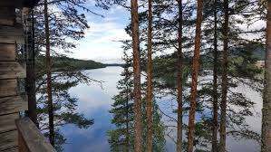 key to essay writing what does it mean to be yourself the  swedish lake summer 2016
