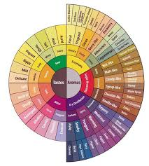 Coffee Flavor Chart Everybody Should Believe In Something