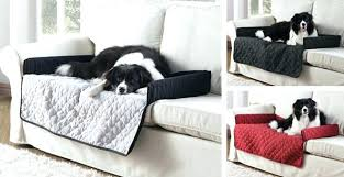 big dog furniture. Pet Big Dog Furniture