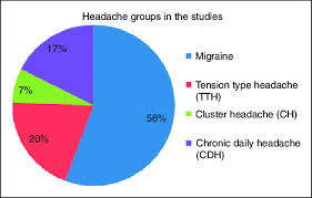 Headache Chart Template The Pie Chart Shows The Headache Types Included In The 80