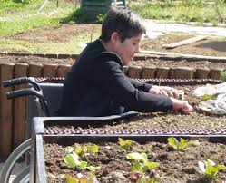 Small Picture The Terraform Raised Garden Bed Helps the Wheelchair Bound Get