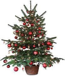Small Christmas Trees U2013 Happy HolidaysChristmas Trees Small