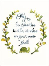 Turtle Quotes Try to be like the turtle quote Turtles Pinterest Turtle 21