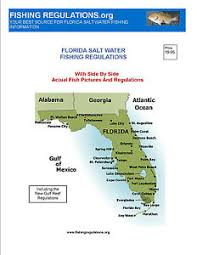 Florida Saltwater Fishing Regulations Chart Details About Florida Fishing Bk July 2017 With Regs Laminted Fresh Saltwater Charts