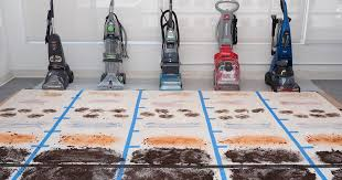 The 3 Best <b>Carpet Cleaners</b> of 2019 | Reviews.com