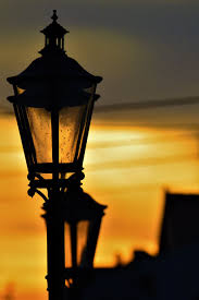 Glow In The Dark Trees To Replace Street Lights Lantern Replacement Lamp Street Light Lighting In The