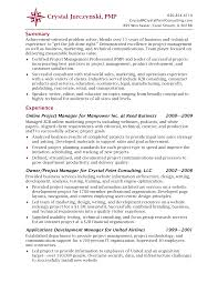 best business consultant resume financial analyst resume example