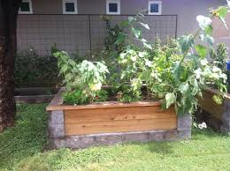Small Picture Cinder block and wood garden bed backyard heaven Pinterest