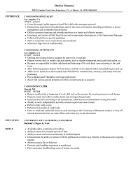 Cash Room Resume Samples Velvet Jobs