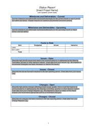 Download Our Sample Of Project Daily Status Report Template Excel