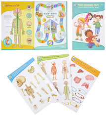 Interactive Growth Chart Leapfrog Tag Interactive Human Body Discovery Pack