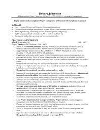 Generous Curriculum Vitae For Project Coordinator Contemporary