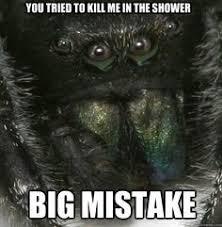 funny spider meme - Google Search | OMG :( | Pinterest | Spider ... via Relatably.com