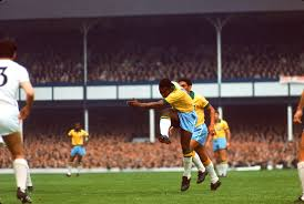 Image result for pele 1966