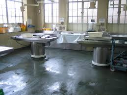 Epoxy Kitchen Floors Belzona 5231 Sg Laminate Epoxy Floor Coating