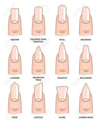 Nail Shape Chart Acrylic Nail Shapes Nail Designs Gel Nails