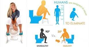القرفصاء أم الجلوس... تعرّف إلى الطريقة الطبية المثلى لقضاء حاجتك! | صحة | جريدة اللواء
