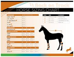 Horse Sizing Guide