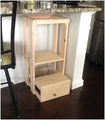 toddler step stool for toilet luxury photos blame crayons learning tower with materials list diy rails bl