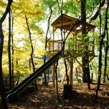 basic tree house pictures. This Treehouse Project Is A Simple Place To Spend Some Adventurous Time Outside In The Backyard. Platform Covered With Metal Roof Enough Space Basic Tree House Pictures P