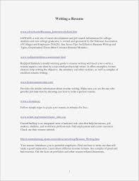 Executive Resume Writing Tips Best Executive Resume Examples 2015 Resume Chcsventura