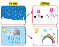 Cause And Effect Worksheets