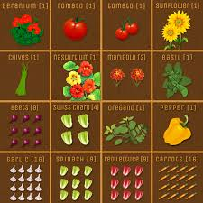 Square Foot Garden Plant Spacing Chart 66 Prototypical Square Foot Planting Chart